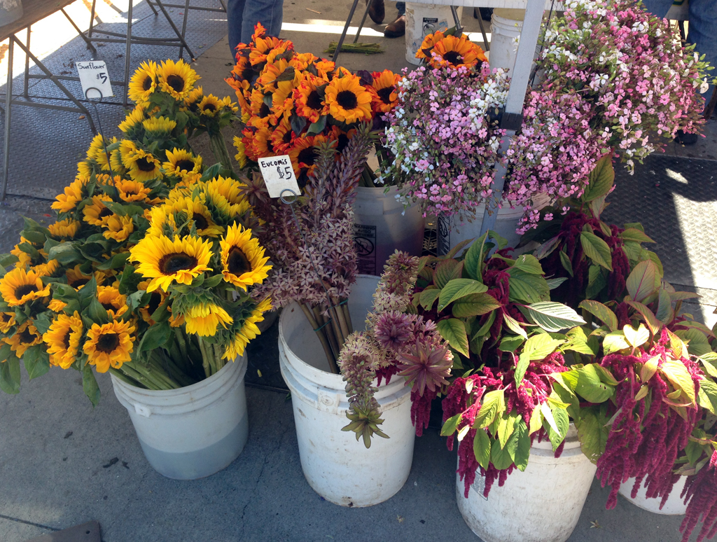 Ferry Market Flowers