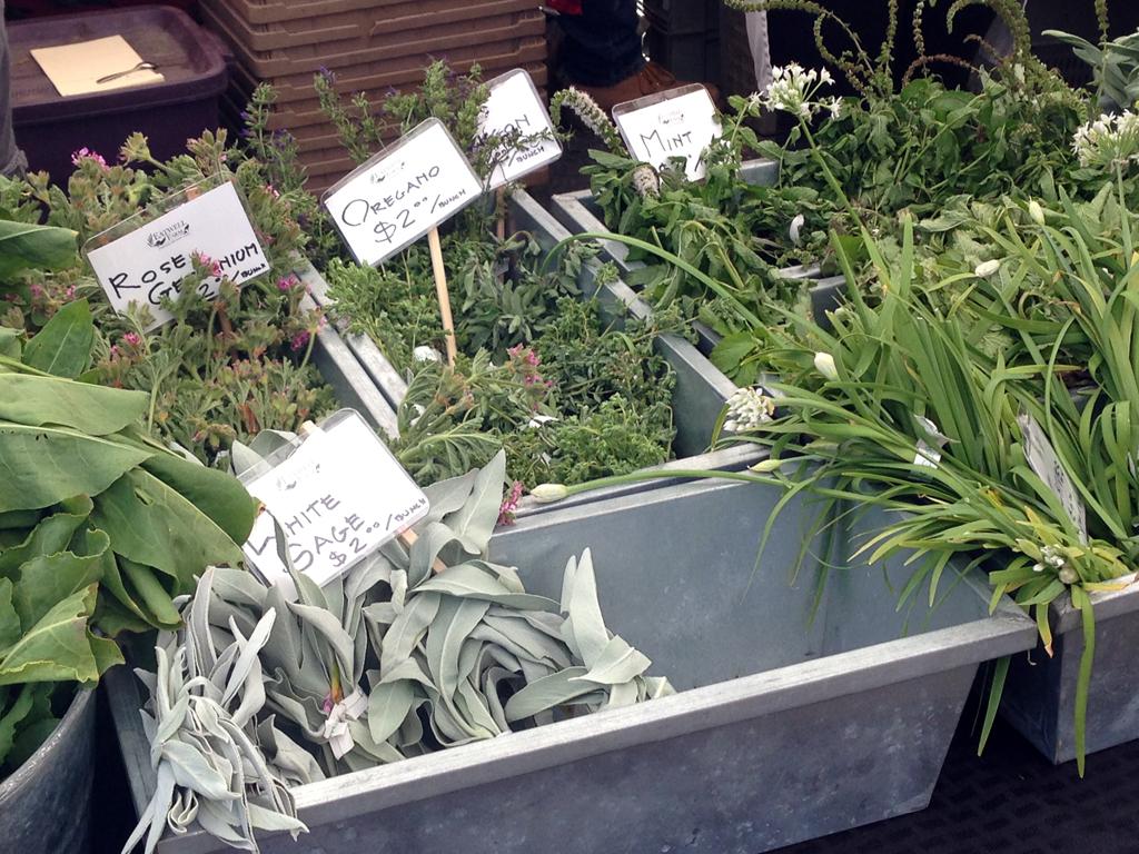 Ferry Market Herbs
