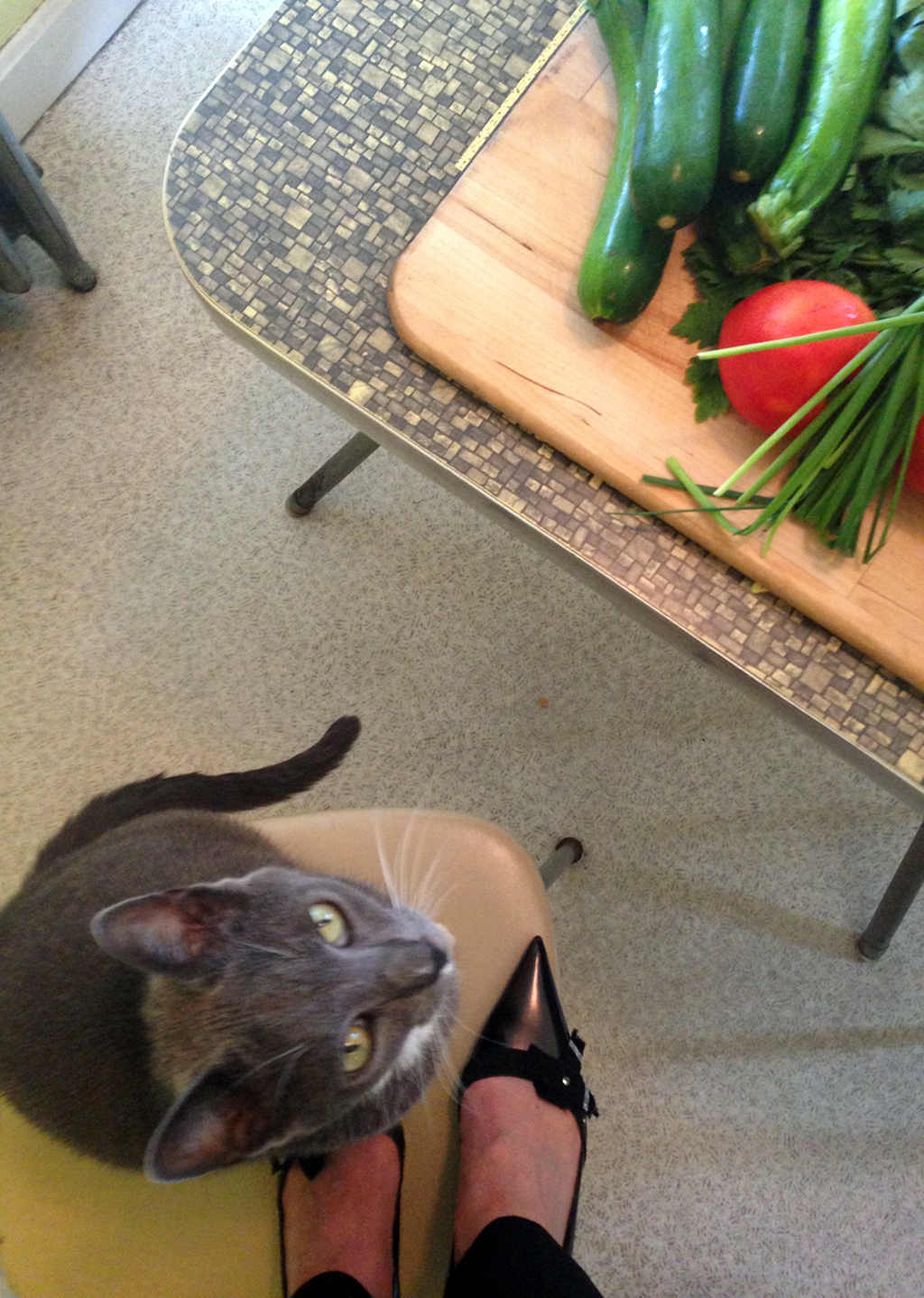 I had a helper during the photography session. Chet is a either fan of local produce or pointy-toes Prada pumps!