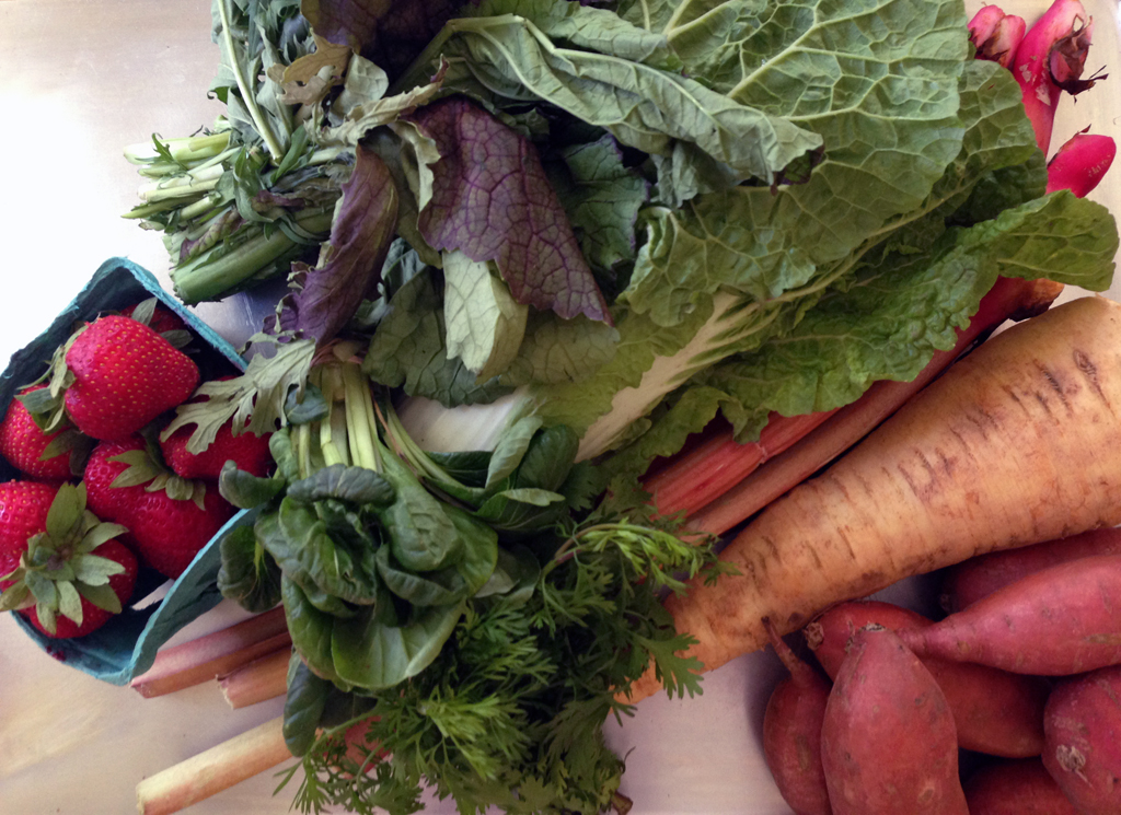 The box: berries, greens, tatsoi, cilantro, rhubarb, behemoth parsnip, and wee sweet potatoes.