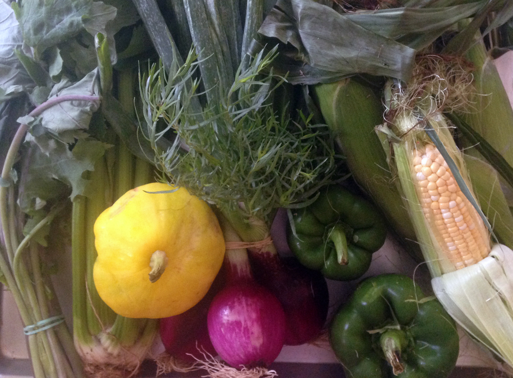 Kale, celery, pattypan squash, red onions, tarragon, bell peppers, zucchini, corn.