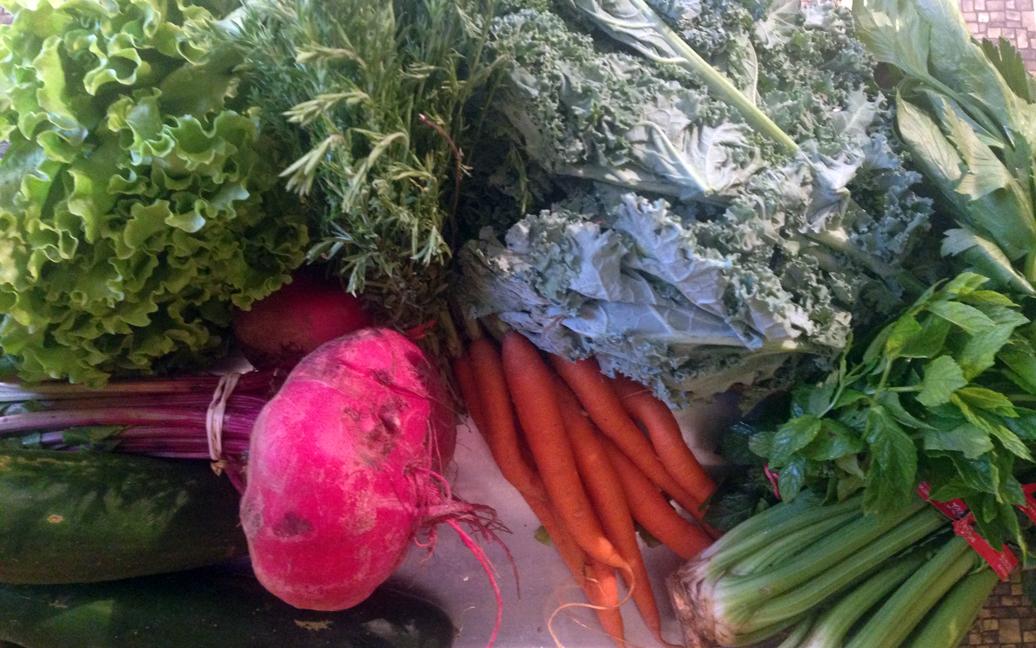 Cucumbers, beets, lettuce, carrots, kale, celery, mint.