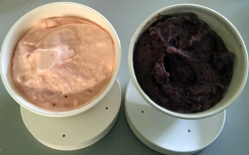 L, watermelon sherbet. R, blueberry buttermilk frozen yogurt. Photo thanks to Stacey Lopes!