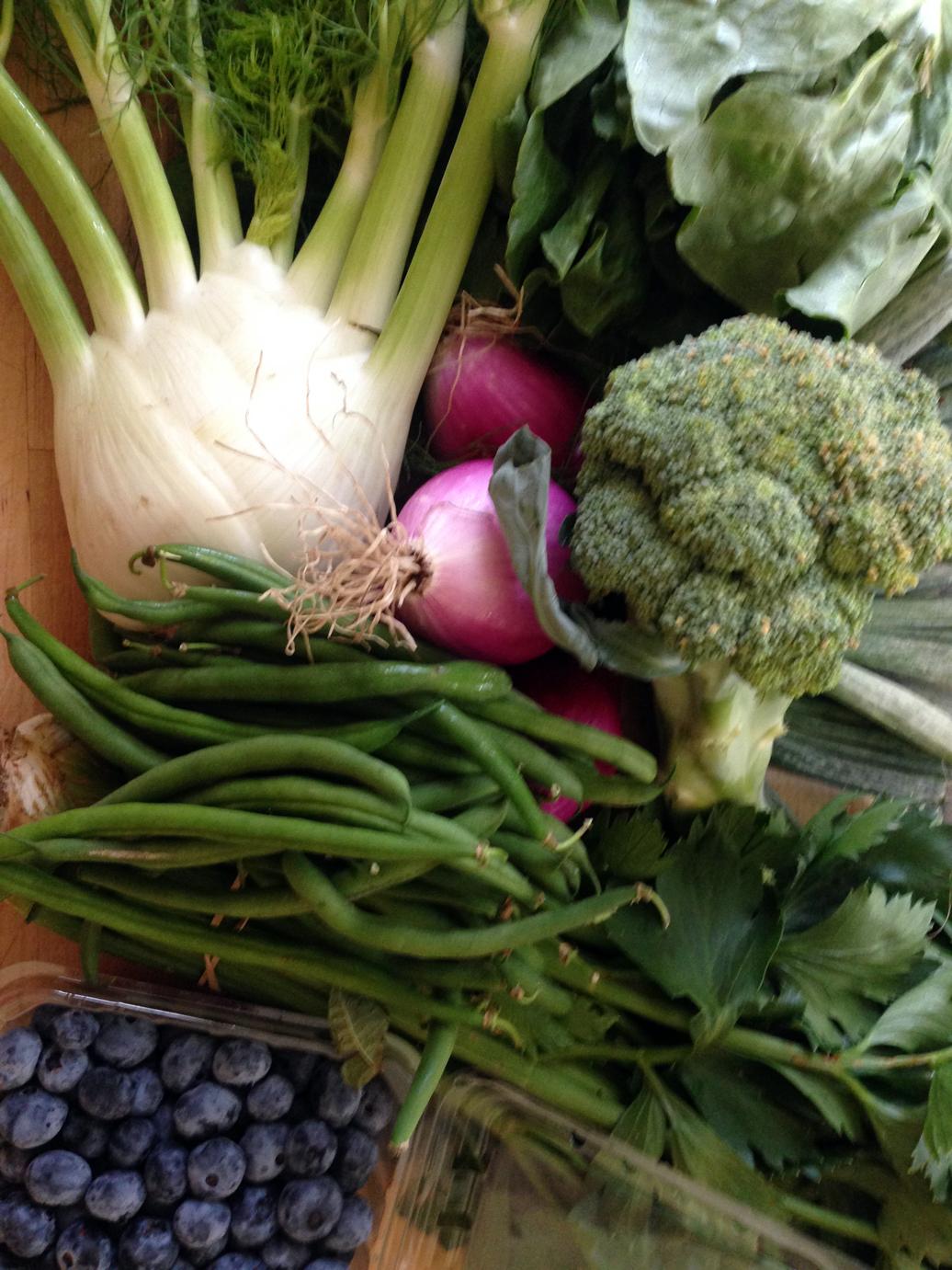 Fennel, onions, lettuce, broccoli, celery, green beans, blueberries.