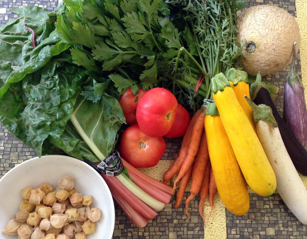 ROY G BIV was here: Ground cherries, chard, tomatoes, celery, carrots, squash, slender eggplants, and a cantaloupe.